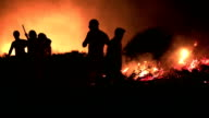 firefighters at night forest fire video