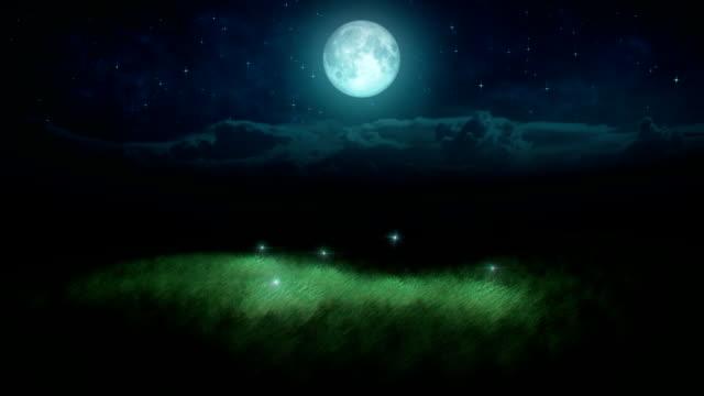 Fireflies loop video
