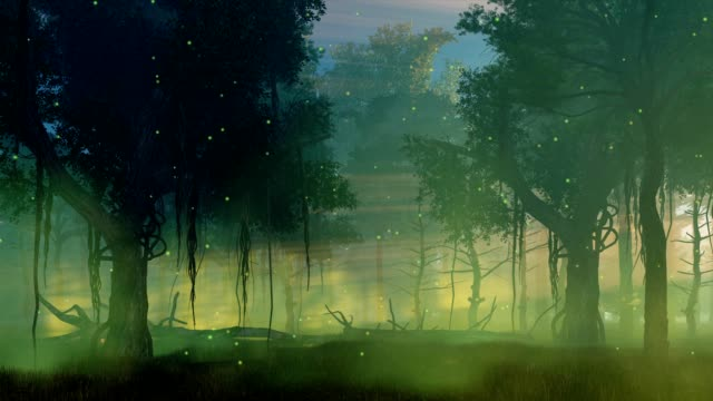 Firefly lights in misty night forest cinemagraph video