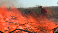 fireman and brush fire video