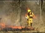 Firemen Spray Forest Fire 1 video