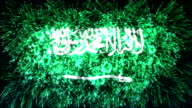firework display flag of Saudi Arabia video