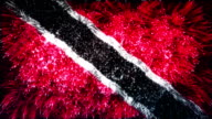 firework display flag of trinidad and tobago video