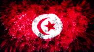 firework display flag of Tunisia video