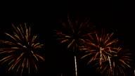Firework In Night Sky Full HD Video video