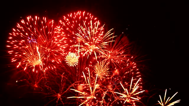 Firework In Night Sky Full HD Video video