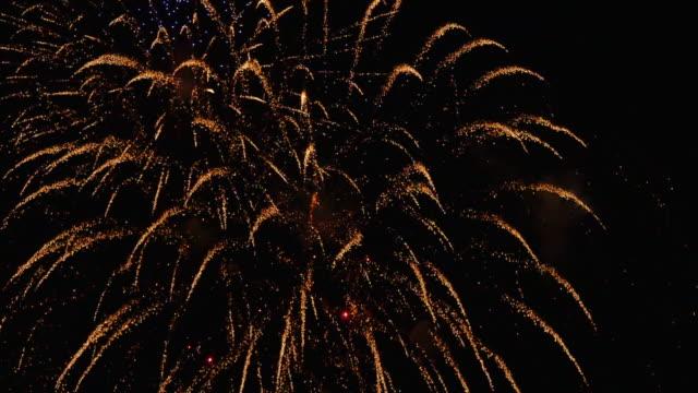 Fireworks 11 video