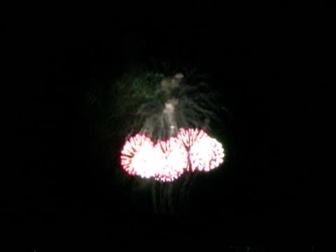 Fireworks 5 video