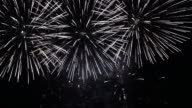 Fireworks display. video