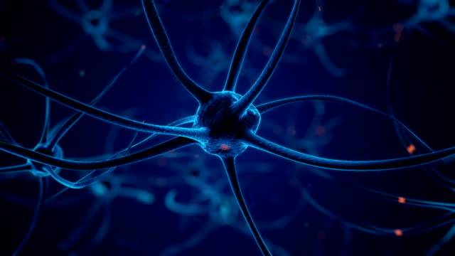 Firing Neurons in Blue video