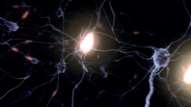 Firing Neurons video