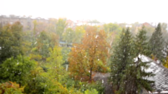 First Snow Fall in the City, Defocused View video