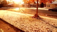 First snow fall video