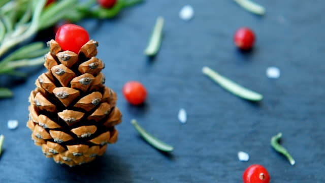 Fir-tree with pine cone, cranberry, rosemary video