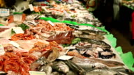 Fish at Boqueria market in Barcelona video