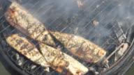Fish BBQ - HD, NTSC video