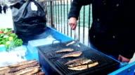 Fish Food video