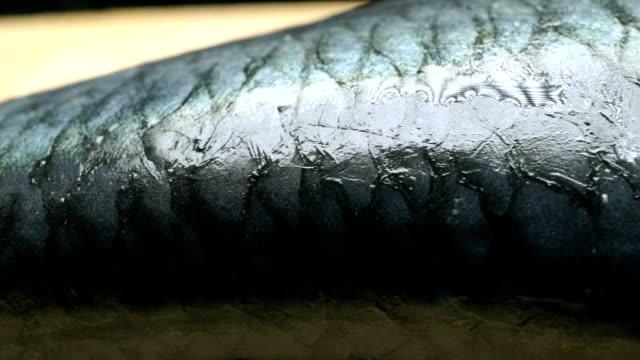 Fish on wooden cutting board. Macro pan video video