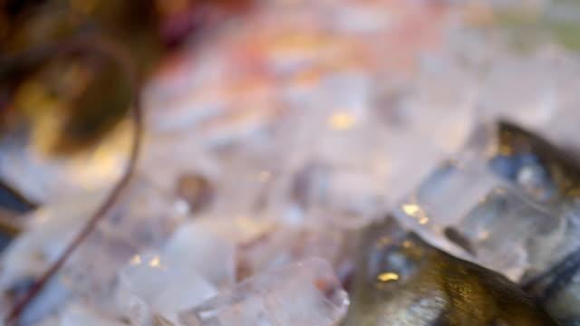 Fish Raw Seafood video