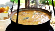 Fish Soup video