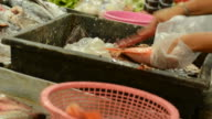 Fish spliting 2 video