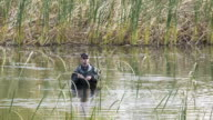 fisherman in the cane pond video