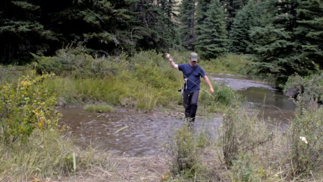 A fisherman reels in a fish with his fly rod in a river in the wilderness -wide video