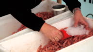 Fisherman selling shrimps from a boat. video