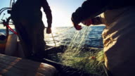 Fishermen at work: industrial professional fishing video