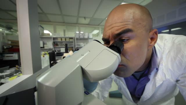 Fisheye Lab video