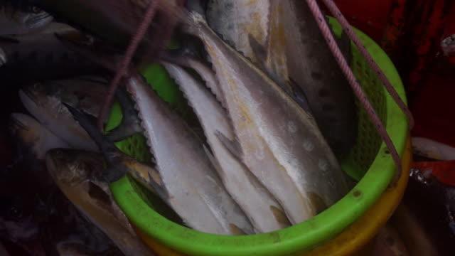 FishinBasket video