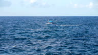 A fishing boat on the horizon in the distance video