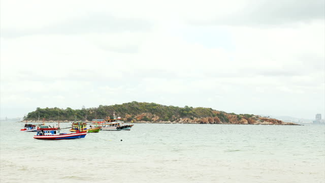 Fishing boats and vessels. video
