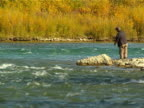 Fishing in a River video