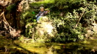 fishing in the old pond video