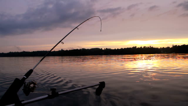 Fishing Rod in Downrigger Trolling at Sunset video