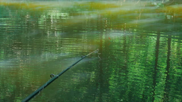 Fishing rod with float against the green pond video