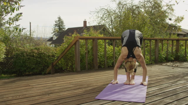 Fit and attractive adult female doing yoga outdoors video