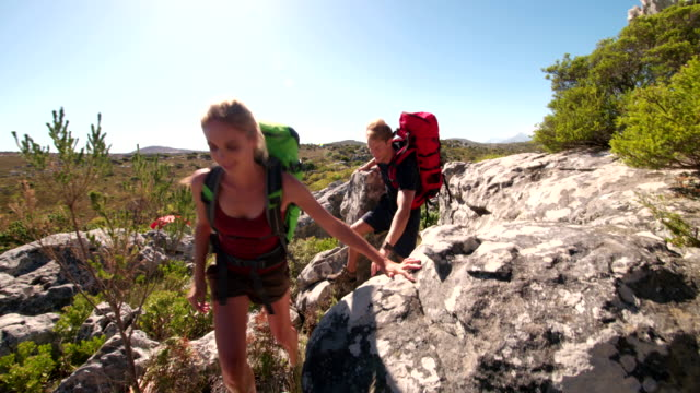 Fit woman hiking with trekking friend outdoors in summer nature video