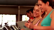 Fit women looking a tablet while fit people running on treadmills video