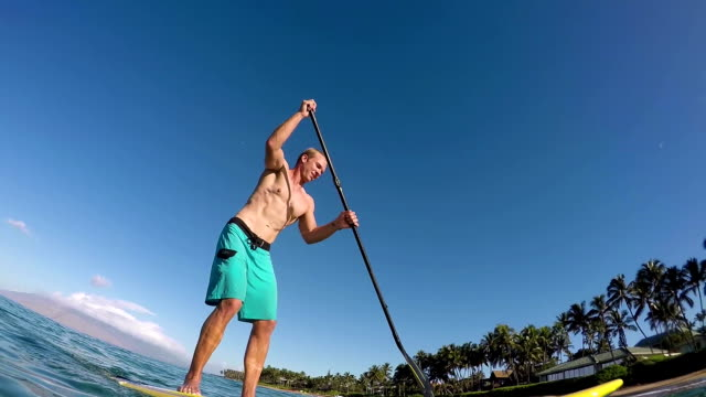 Fit Young Man Stand Up Paddle Boarding in Summer video