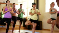 Fitness class with multiethnic students doing Yoga and warming up video