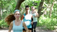 Fitness instructor leading small group of athletes while running off road video