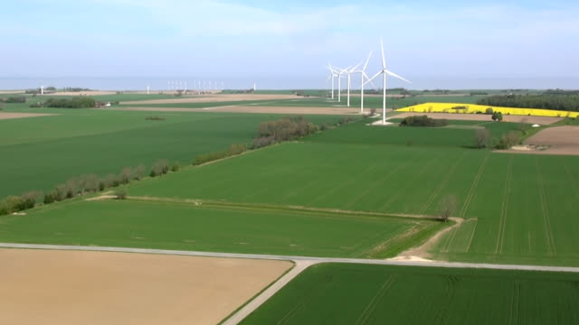 Five huge wind turbines in Denmark in the field ner the sea seen from camera drone video