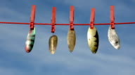 five spoon-baits on clothes-line and sky video