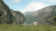 Fjord in the mountains. Norway. Smooth dolly shot. video