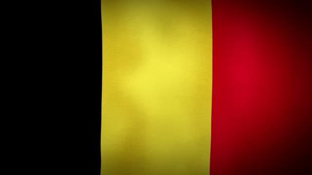 Flag Belgium video