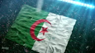 Flag of Algeria at the stadium video