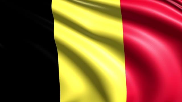 flag of Belgium (loop) video