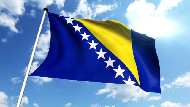 flag of Bosnia and Herzegovina (loop) video